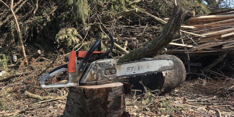 Chainsaw - a landmark of agricultural technology